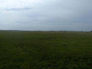A common Uruguay vista.