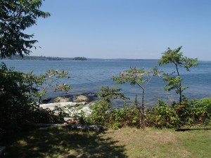 View of the mainland from Thief Island.
