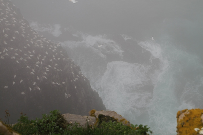 A fleeting view through the fog of the water from the top of the cliff.